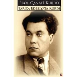 Tarîxa Edebiyata Kurdî